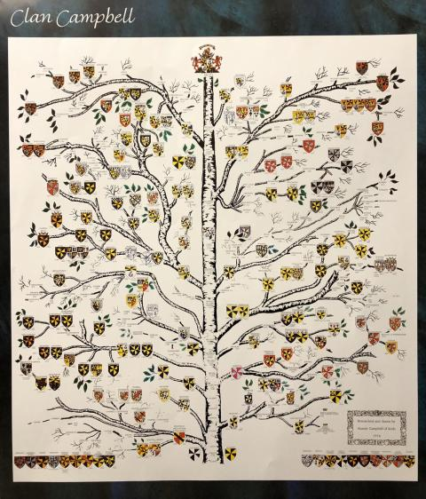 Clan Campbell Cadet Branches Matriculated Arms Family Tree by Alastair Lorne Campbell of Airds c1976